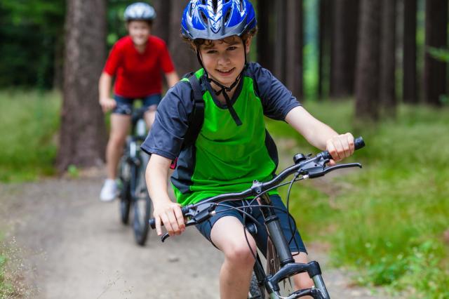 Bourse aux vélos au château de harzé (gratuit)